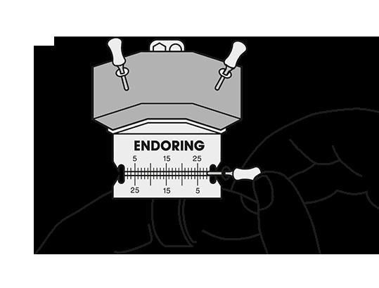 Endoring Ablauf D